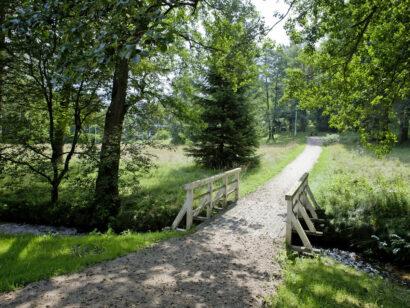 Kurpark Bad Brambach Vogtland