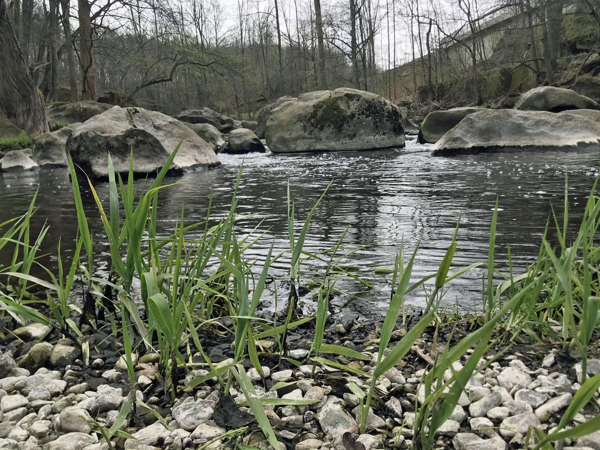 Strudeltöpfe werden die bizarren Felsen genannt, bei Markersbach, Chemnitztal