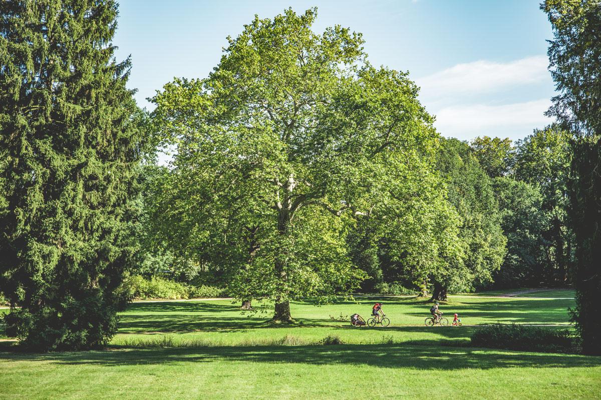 Fürst Pückler schuf mit dem Muskauer Park ein Meisterwerk. Radweg