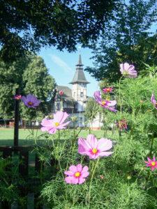 Gartenanlage Dr. Schreber in Leipzig Sachsen Kleingarten