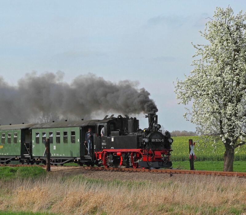 Der Wilde Robert der Döllnitzbahn in Sachsen