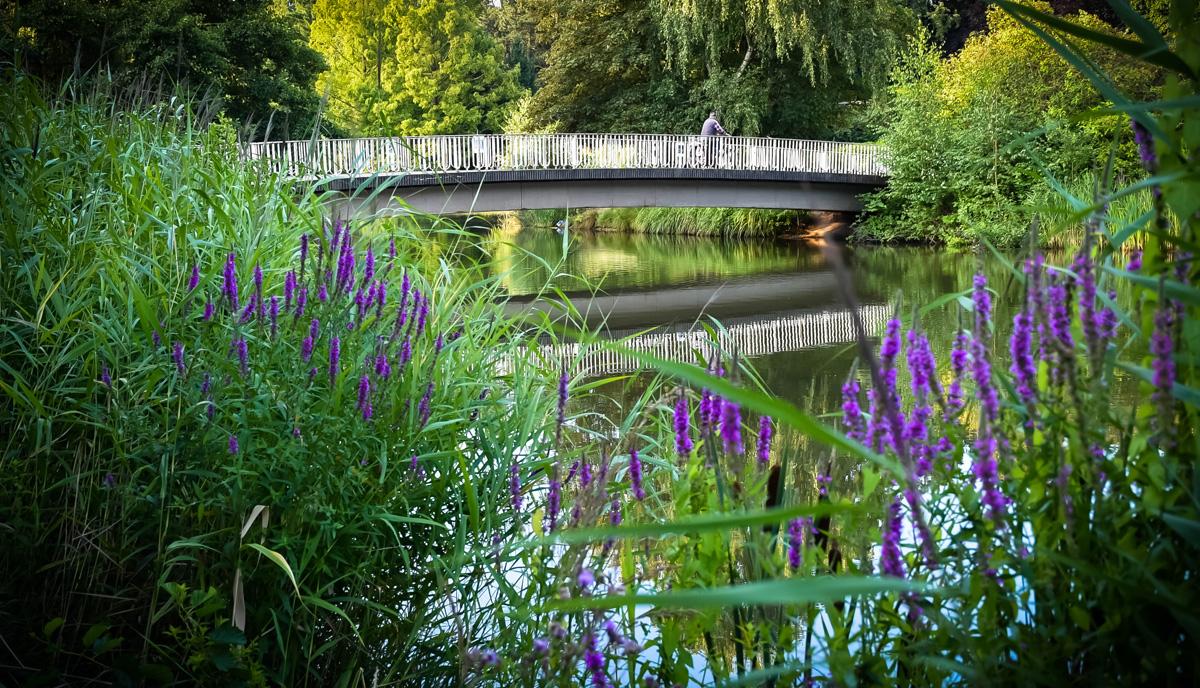 Brücke agra-Park Markkleeberg